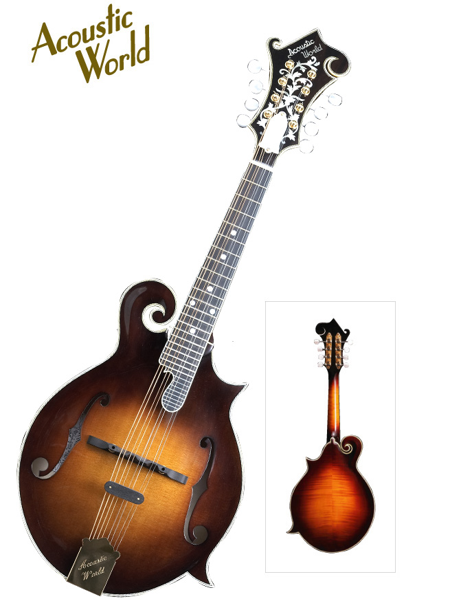 Acoustic World MANDOLIN